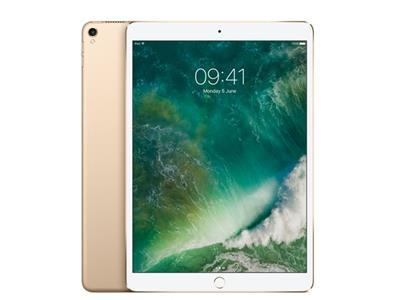 Apple iPad Pro Wifi 64GB - Gold MQDX2B/A
